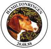 logo hamiltonringen