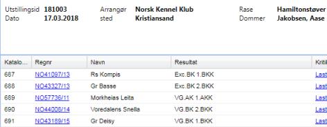 NKK Kristiansand 17.mars
